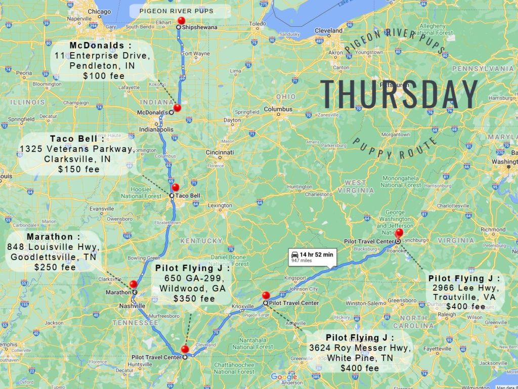 Thursday Puppy Route